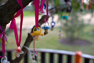 Pacifiers hanged in a tree